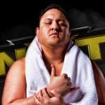 ساموا جو يتحدث عن أهمية NXT وينصح WWE بالتعاقد مع بعض المواهب