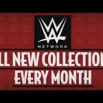 كم بلغ عدد المشتركين مع شبكة WWE مع نهاية 2015؟