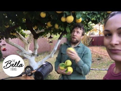 دانيال براين وبري بيلا يقدمان جولة داخل حديقة منزلهما (فيديو)
