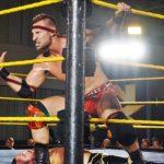 نجم اتحاد حلبة الشرف السابق ينطلق رسمياً في NXT، من ستواجه آسكا في TLC؟